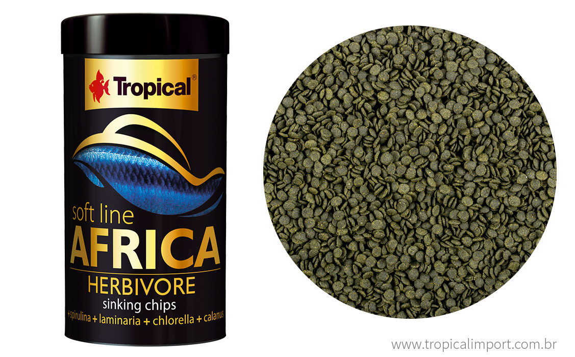 Soft Line Africa Herbivore