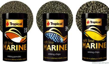 soft-line-marine