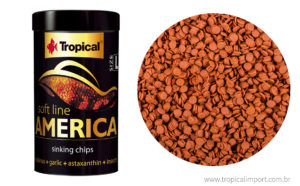 Soft line America (tamanho grande) – Chips