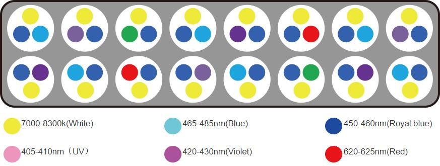 Distribuição de LEDs da Luminária modelo Aqua Sunrise 60