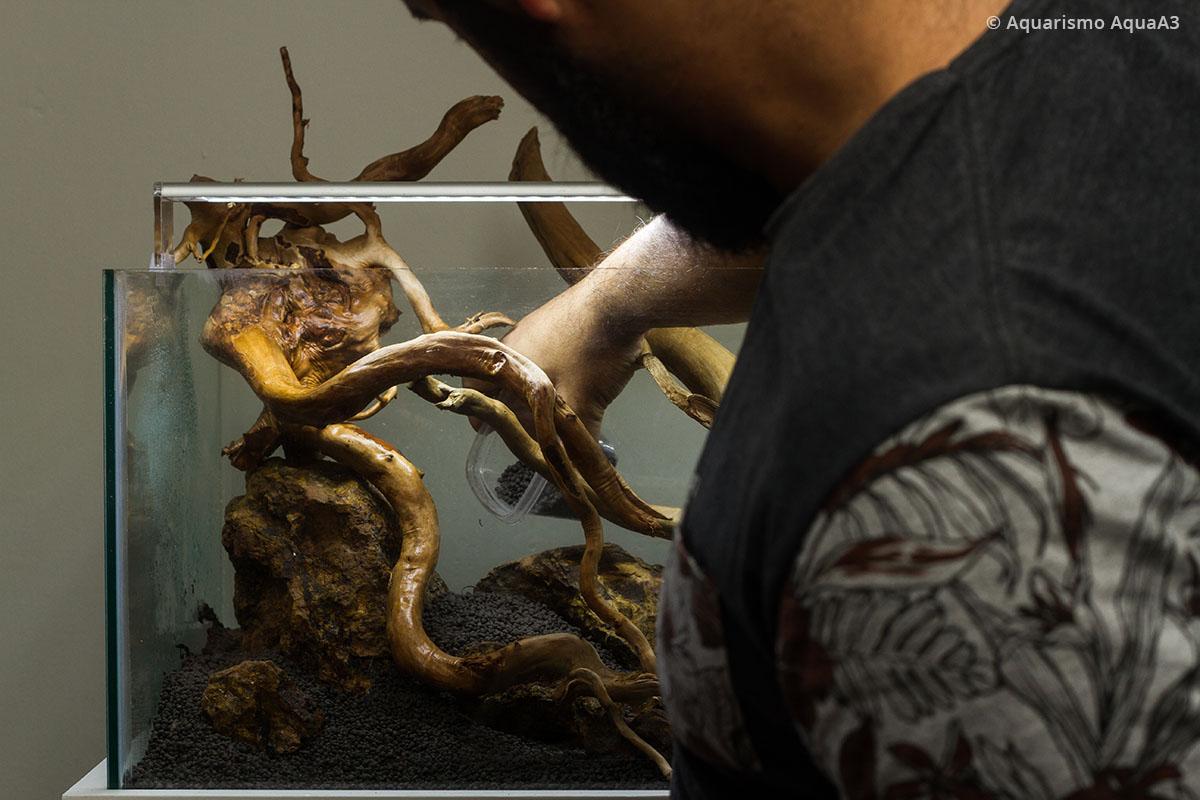 Adicionando o substrato no aquário
